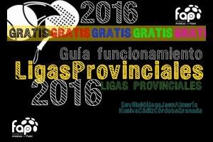 LIGAS PROVINCIALES DE PADEL 2016. LA FAP ABRE EL PLAZO DE INSCRIPCIÓN